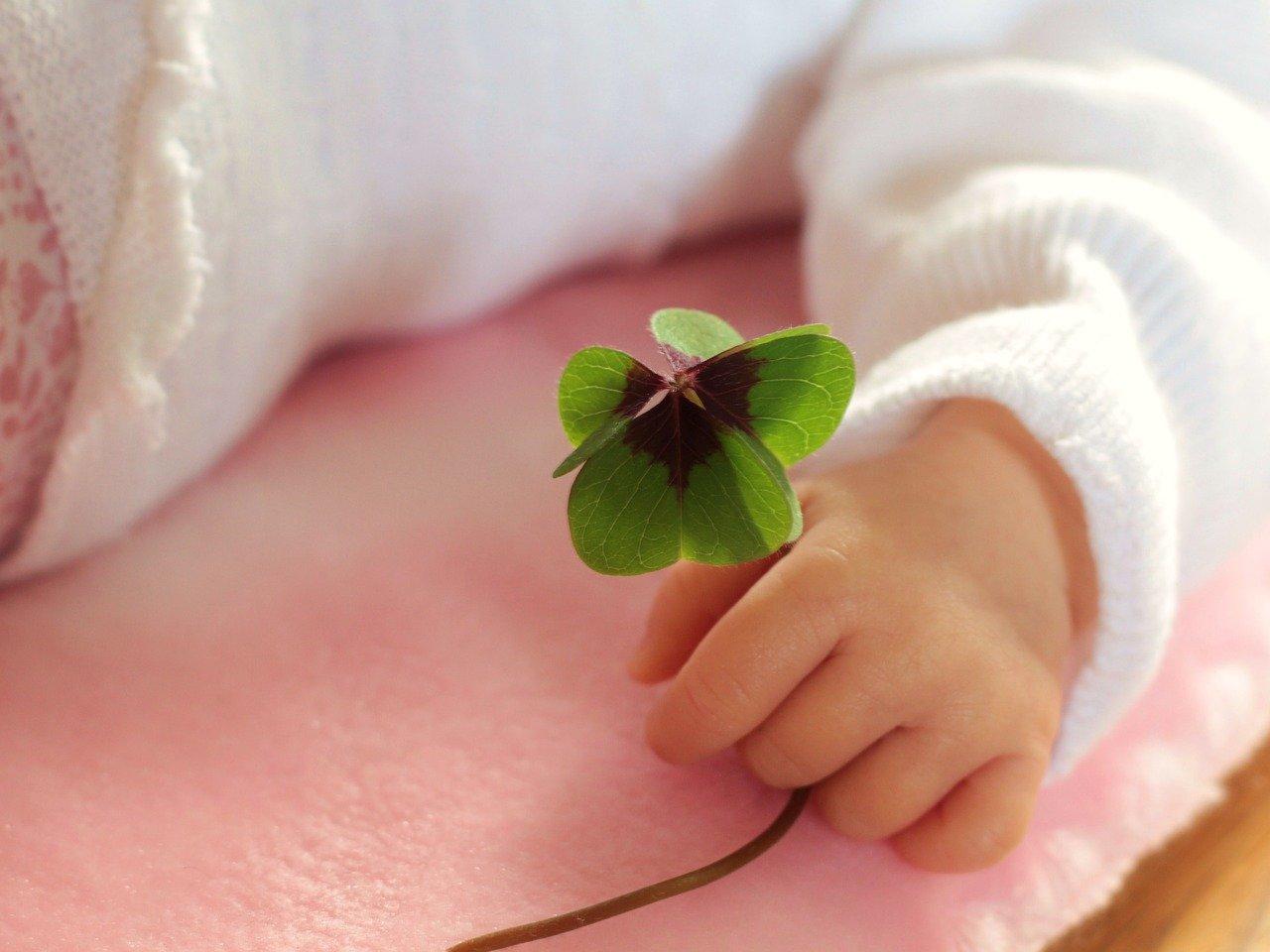 four leaf clover 1892660 1280 - Verduurzamen woning - Verduurzamen woning